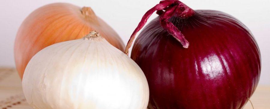 Cipolla bianca, rossa e dorata