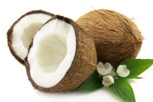 Gli utilizzi del cocco