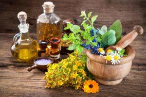 Le piante medicinali.