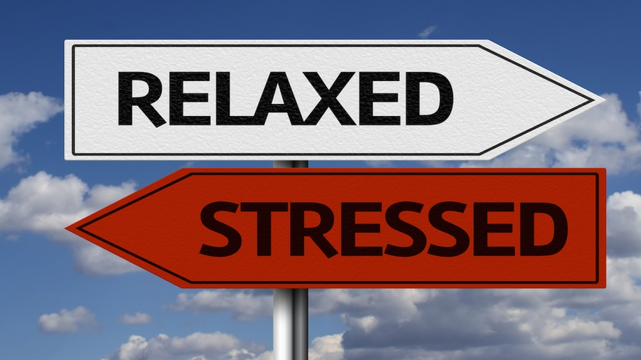 Stress: i 10 rimedi naturali per combatterlo
