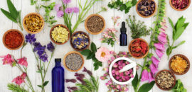 Floriterapia: cos'è, perché fa bene e i suoi utilizzi