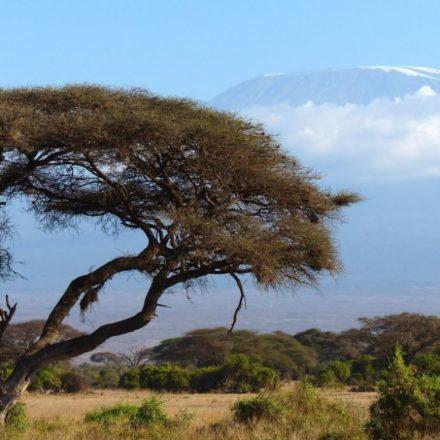 Mal d'Africa: cos'è e come guarire dal sentimento che accomuna tanti viaggiatori