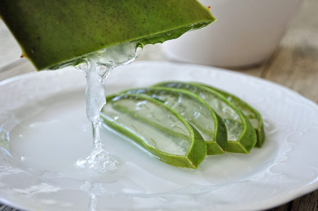 Aloe vera is a remedy against dark circles and eye bags.